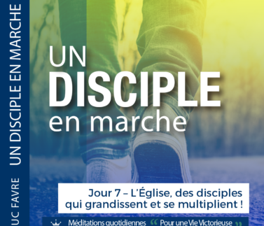 Plan 13 Luc Favre - Jour 7 – L'Église, des disciples qui grandissent et se multiplient ! Square